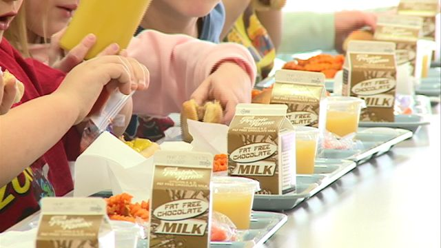 school breakfast programs essay The school breakfast program is a federally funded program that assists schools and other agencies in providing nutritious breakfasts to children at reasonable prices the united states department of agriculture is responsible for overseeing the program nationally in iowa, the program is administered by the iowa department of education, bureau of food and nutrition.
