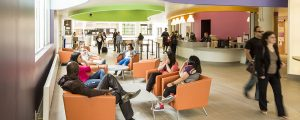 What to Do when You First Arrive on Campus