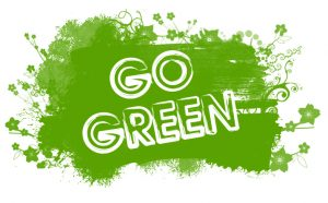 How to Make your Dorm Room Green